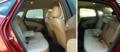 英朗GT - 后排座椅与空间
