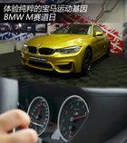 感受纯粹的宝马运动基因 BMW M赛道体验