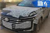 广汽传祺新GA8换GS8同款2.0T 动力超大众辉昂