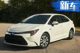 丰田全新卡罗拉即将上市!动力升级/油耗仅4L
