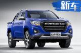"""标致""""落户""""长安 首款明年投产 车长超过5.3米"""