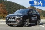 竞争途岳与CR-V售15.59万起 第四代途胜值不值?