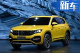 一汽-大众中型SUV推插混版 明年开卖-油耗不到2L