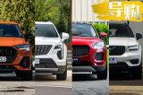 都市大男孩的欢乐颂 这四款豪华SUV到底适合谁?