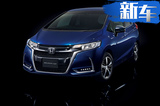 """本田""""超跑""""推特别版车型 外观运动/8月正式开卖"""
