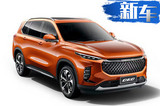 上汽全新大7座SUV首发 6月上市PK传祺GS8