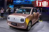 欧拉R1引领中国小车市场变革 再推10款新车