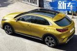 起亚跨界SUV售价曝光 供五款动力可选/即将开卖