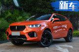WEY两款SUV将在美国/欧洲销售 售价高于国内