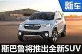 斯巴鲁将推出全新SUV  与途观同级(图)