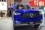 长城炮商用皮卡汽油两驱11.18万起,北京开启预售