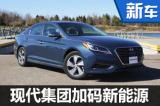 现代在华加码新能源布局 15款新车将上市