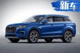 启辰全新SUV实车曝光 比RX5 MAX还大/4天后发布