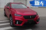 轿跑版WEY SUV酷似宝马X6!命名VV7 GT图片曝光