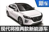 现代两款新能源车将入华 明年3月上市-图