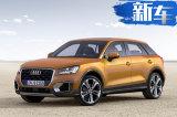 奥迪Q2将推出纯电动版 专供中国市场/年内上市