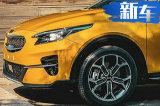 起亚跨界SUV街拍曝光! 搭1.0T引擎/9月发布