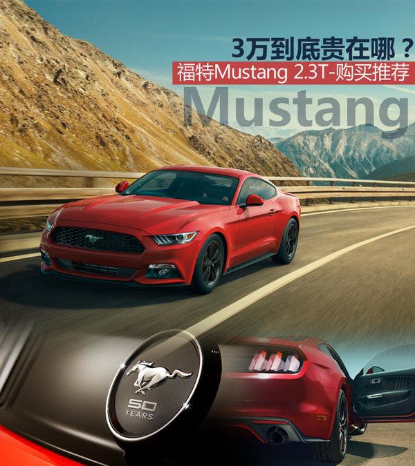 福特Mustang-购买推荐 纪念版贵在哪?_野马_导购信息-网上车市