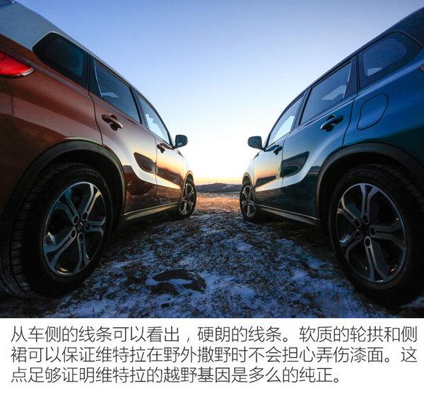 不惧冰雪 维特拉专业级SUV冰雪试驾-图6