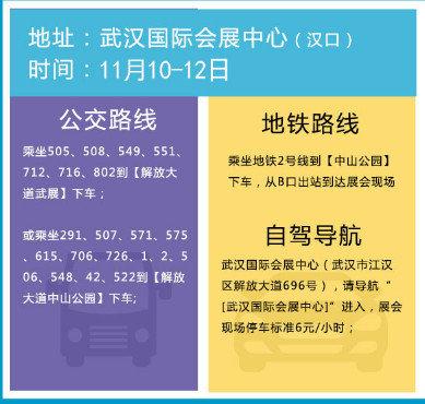 双11巧遇中部(武汉)巅峰汽车博览会-图6