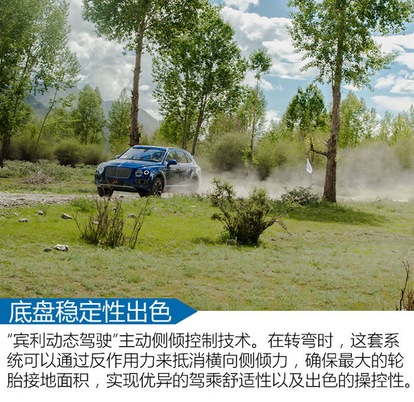 全能奢華SUV標桿 賓利添越Bentayga試駕-圖5