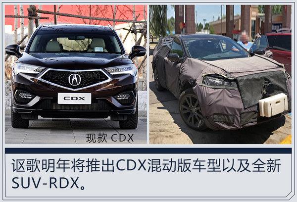 邹立:主打年轻消费群体 讴歌明年推出两款新车-图4