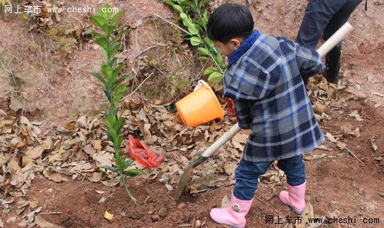 义乌利星奔驰植树节公益活动圆满结束