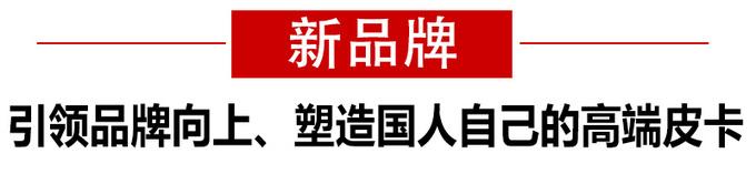 新品牌代际差成就2019年度皮卡——长城炮-图2