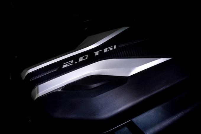 价格最低的柴油自动挡皮卡国六标准+宽体车身-图7