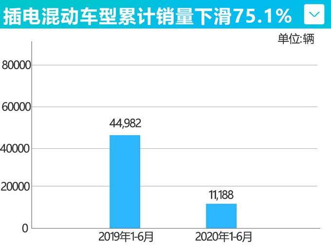 比亚迪新能源车6月销量腰斩 累计暴跌59.2-图3