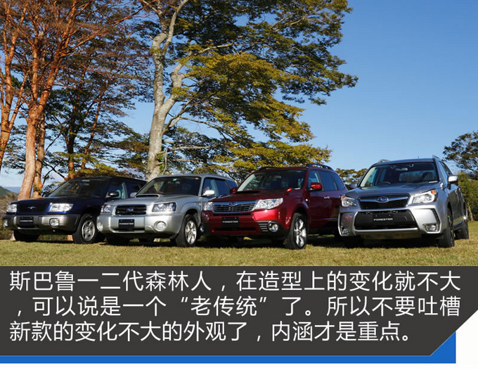 老美最爱的进口车国内不到30万 新森林人试驾