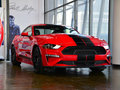 SHELBY GTE 图片